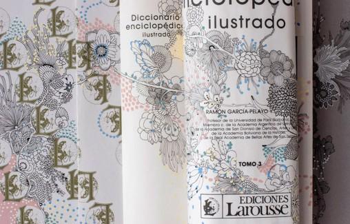 Laura-Riolfi-Enciclopedia-intervenida-para-Petit-Gallerie-02